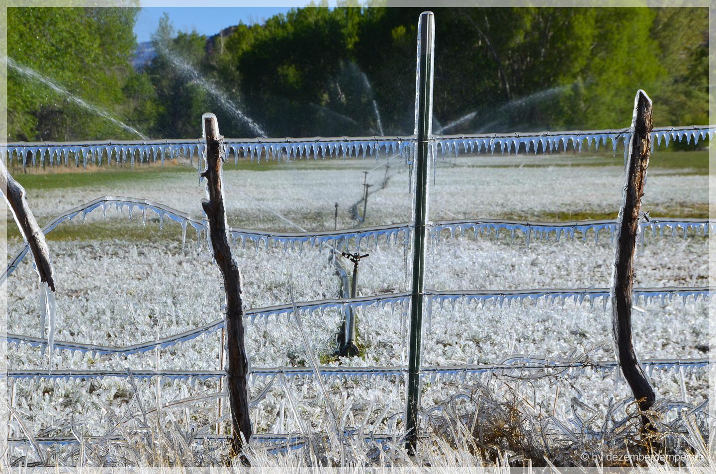 Frost morgens beim Losfahren