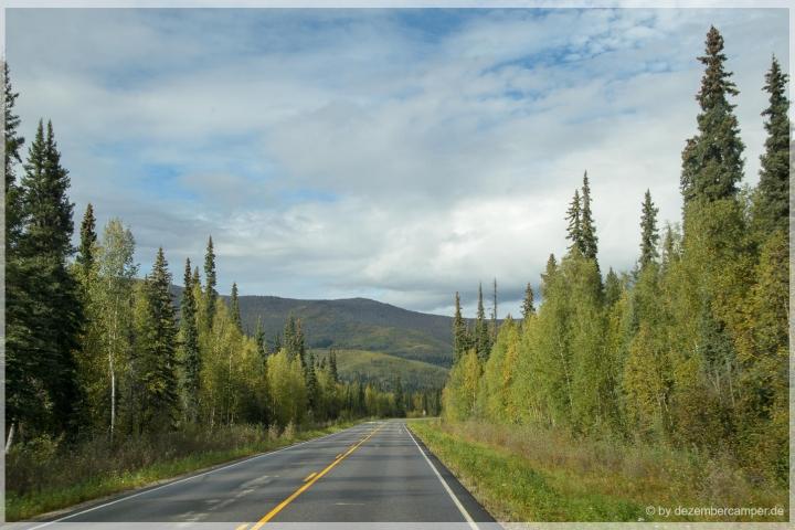Chena Hotspring Road/Alaska