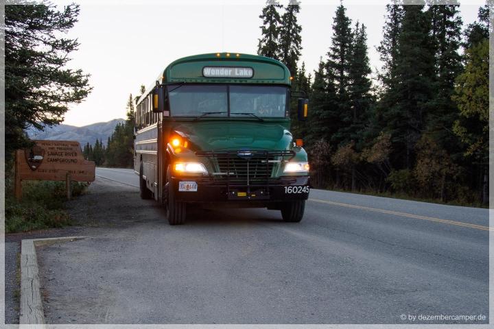 Denali NP Bus
