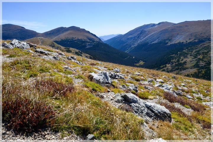 Trail Ridge Road - Alpine Trail