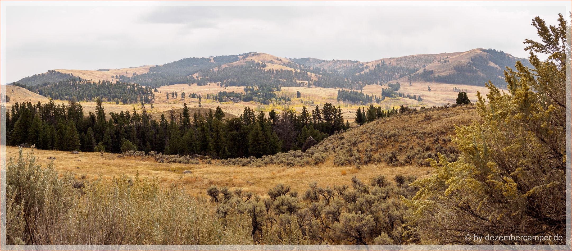 Yellowstone NP - es zieht sich zu