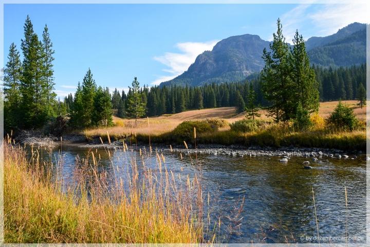 Yellowstone NP - Lamar Valley