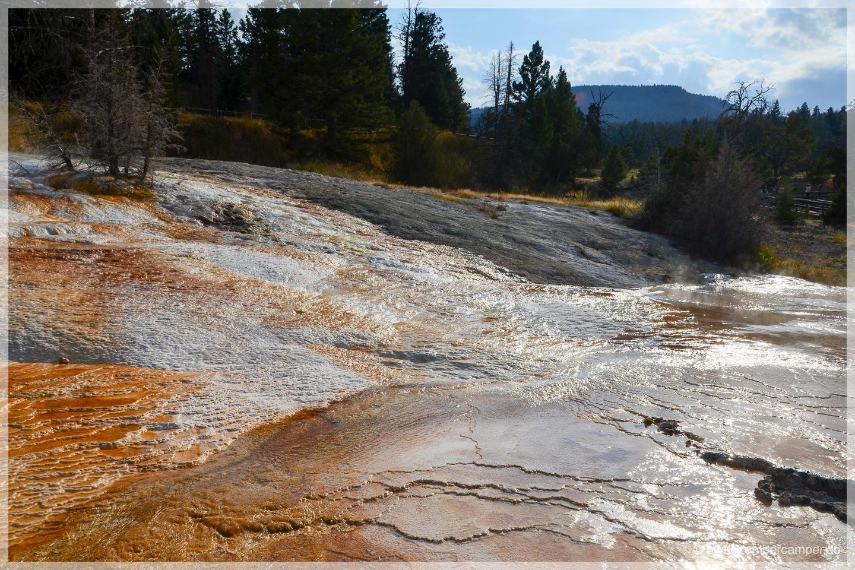Yellowstone NP - Mammoth Hot Springs