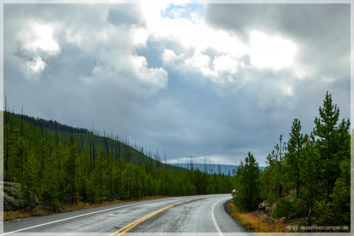 Yellowstone NP - on the road
