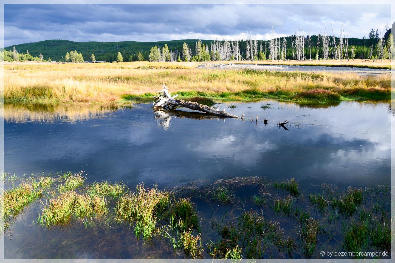 Yellowstone NP - Madison River