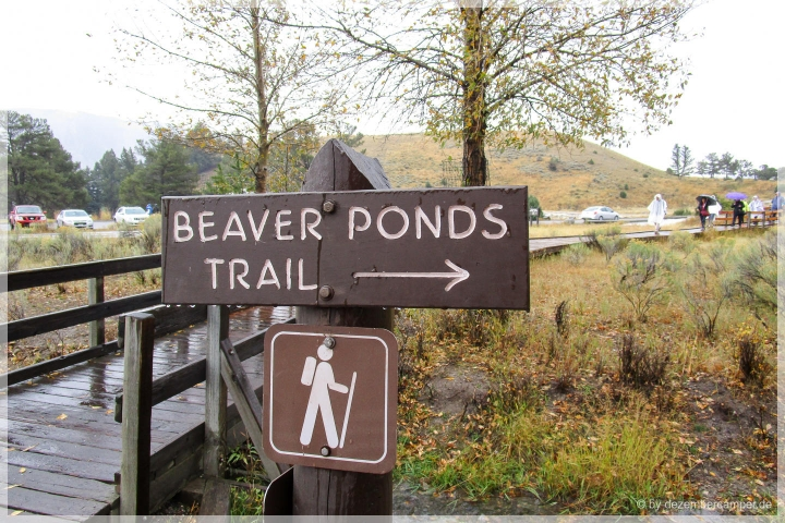 Beaver Ponds Trail