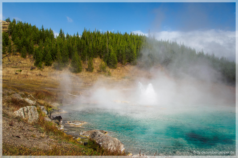 Yellowstone NP - Imperial Geysir