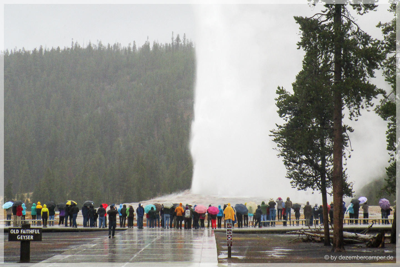 Yellowstone NP - Old Faithful