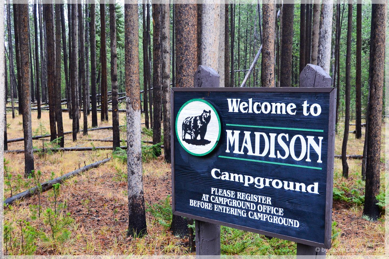 Yellowstone NP - Bye bye to Madison CG