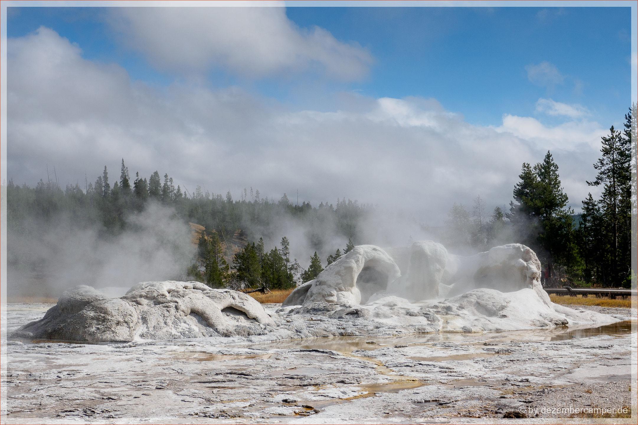 Yellowstone NP - Grotto Geysir