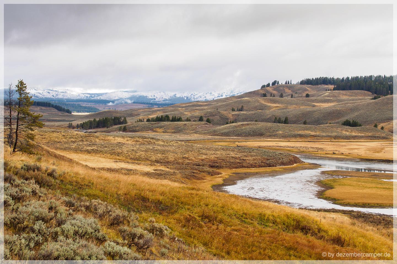 Yellowstone NP - Hayden Valley