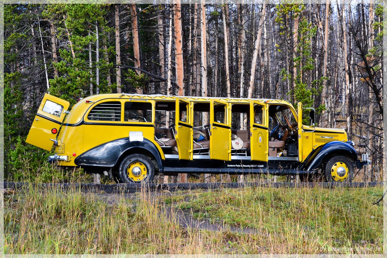 Yellowstone NP - Tourbus