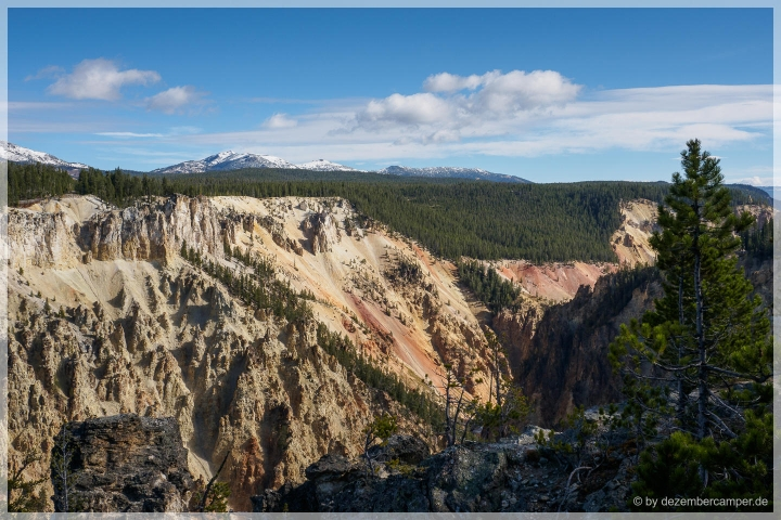 Yellowstone NP - Grand Canyon Of The Yellowstone