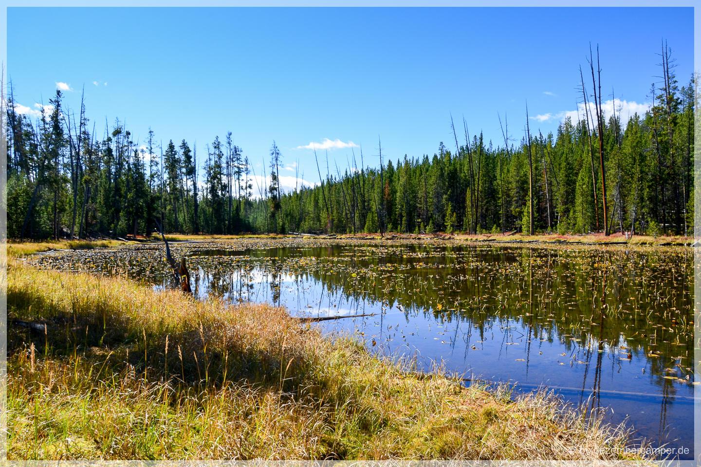 Yellowstone NP - Ribbon Lake