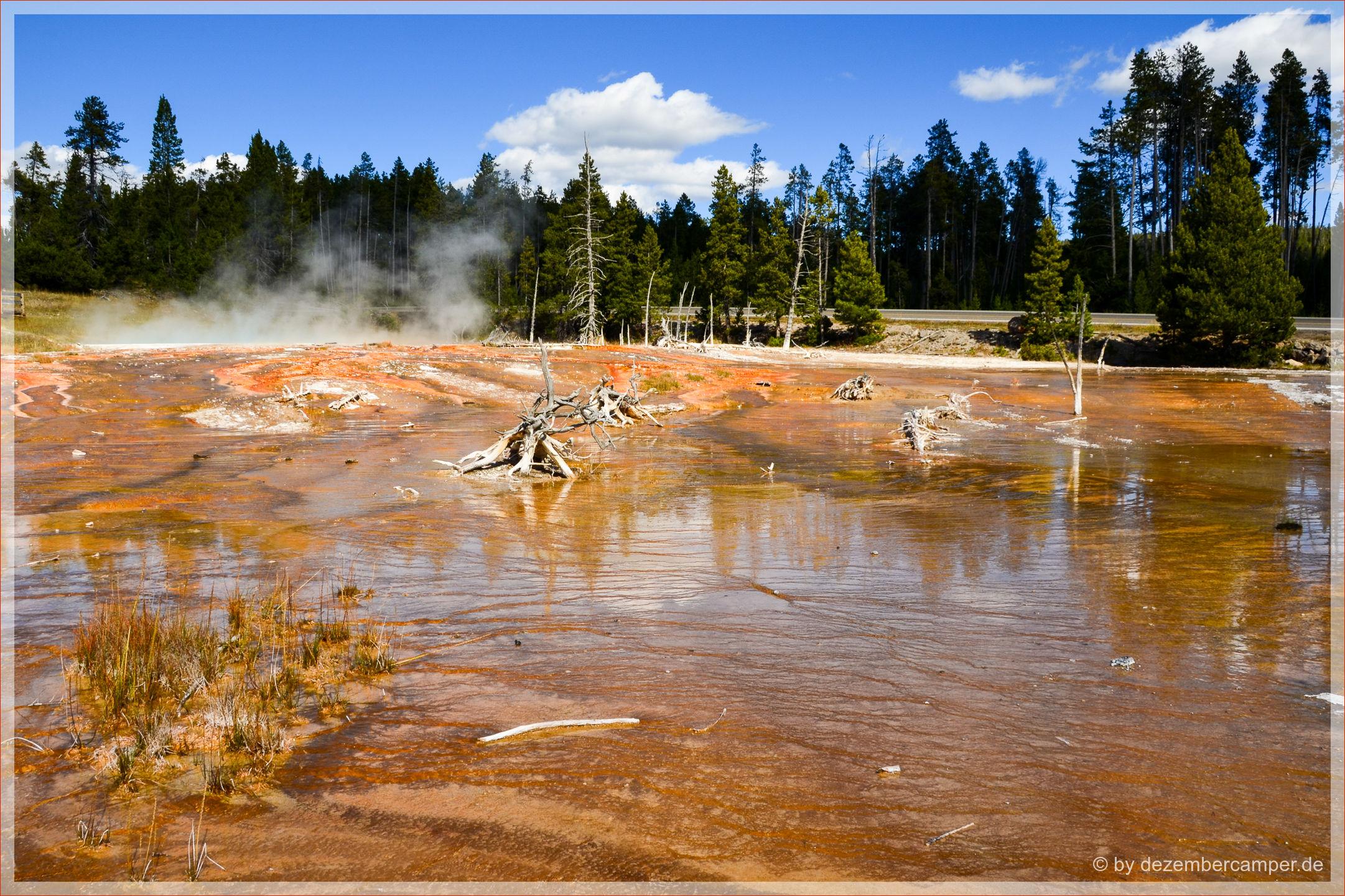 Yellowstone NP - Fountain Paint Pots