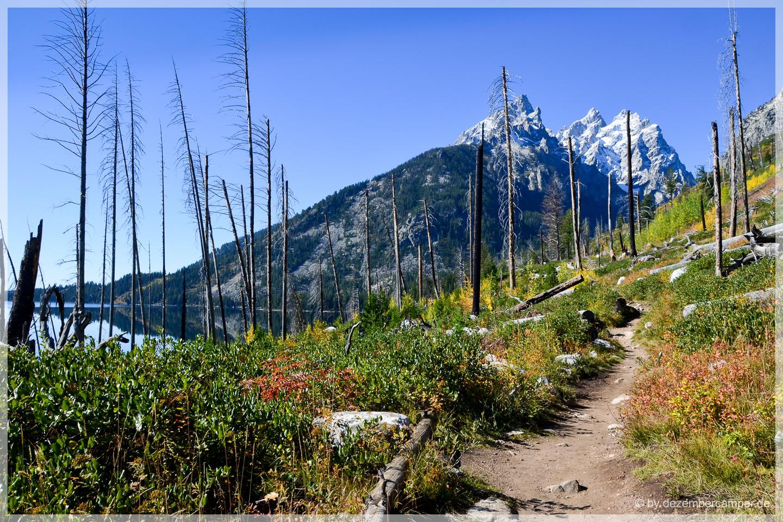 Grand Teton NP - Jenny Lake