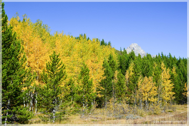 Grand Teton NP - Taggart Lake Trail