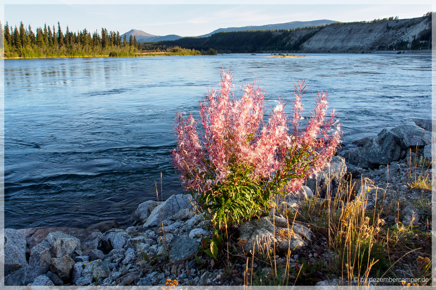 Whitehorse - am Yukon River