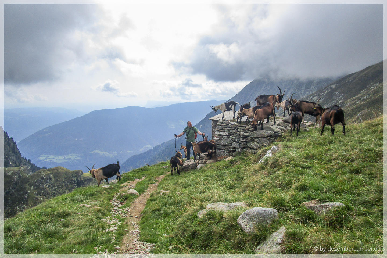 Wanderung zur Lodnerhütte