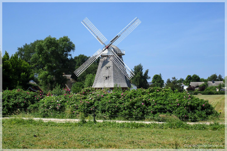 Mühle Ahrenshoop
